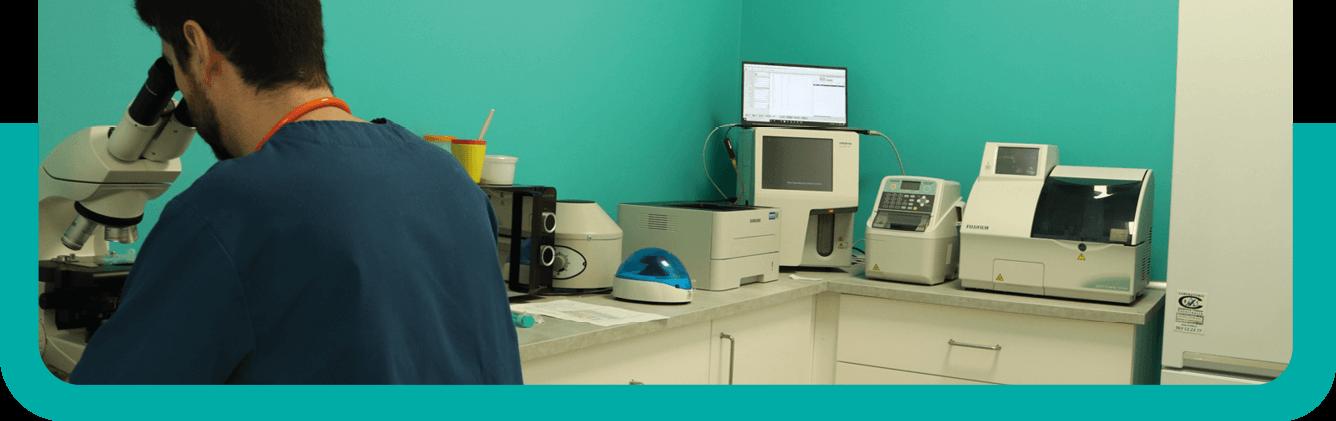 laboratorio lucentum veterinaria