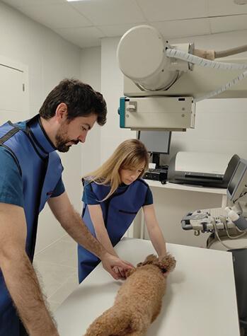 servicios rayos radiografia