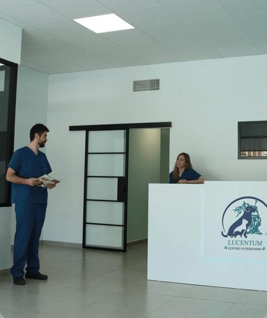 recepcion clinica